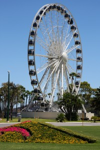 Observation wheel in Perth